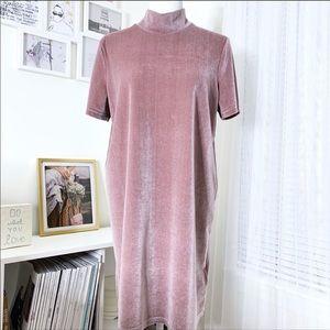 Pink Velvet Madewell Dress